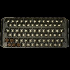 modulo 461